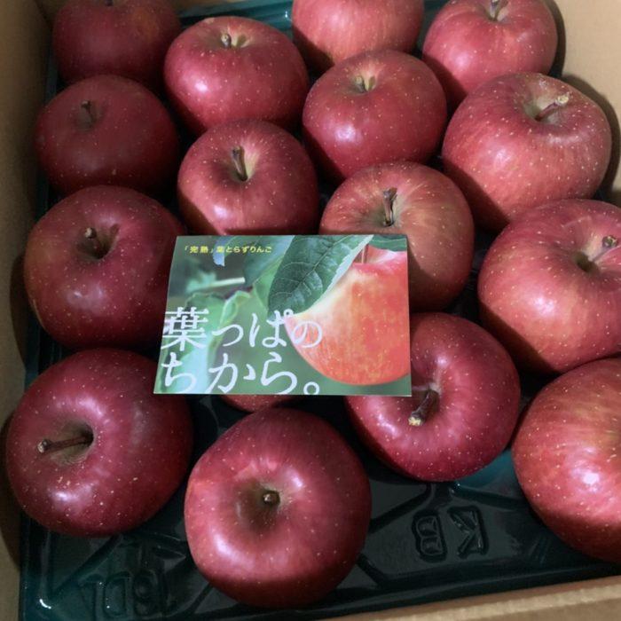 りんごが届きました!